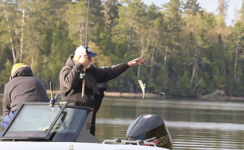 Anglers pull in small walleye on Lake   Vermilion on opener.