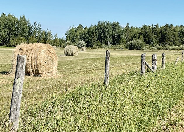 Hay yields are running about one-third of normal this year due to the intensifying drought.